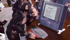 Monkey on a Computer