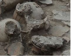 Wine Jars - Tel Kabri