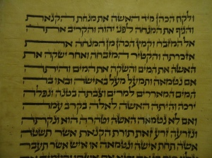 Hebrew Text - Torah Scroll